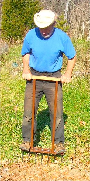 man inserting  broadfork into soil by stepping full weight on tine bar